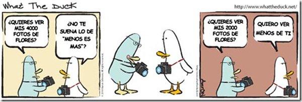 Lo mejor de What the duck