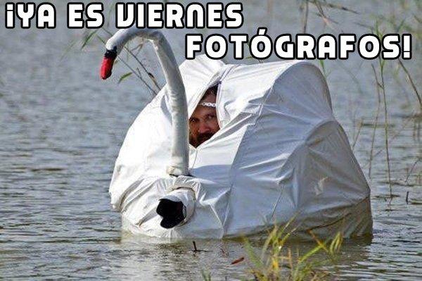 Fotografia viernes 23