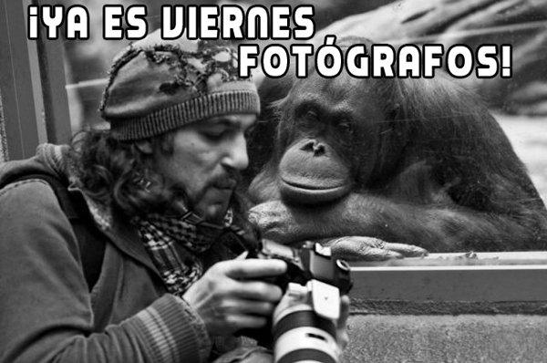 Fotografia viernes 30