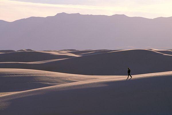 pbb-proportion-desert-walking_55289_600x450
