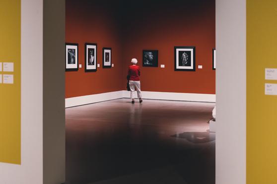 Juega con la Fotografia y aprende a encuadrar